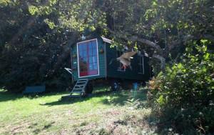 camping-frankrijk-limousin-kamperen-bij-de-boer-pipowagen